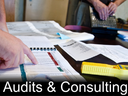 audits & consulting